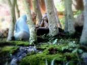 Penjing - Detalhe de floresta de Ficus - O jogo de Go