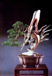 7B – Juniperus Chinesis altura67cm