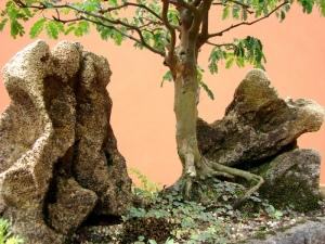 Pedras e Vaso de concreto celular