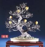 bonsai051