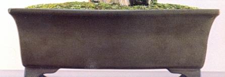 Detalhe do vaso 1526 X 230