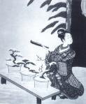 desenho-1-bonsai