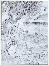 desenho-27-bonsai