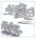 desenho-38-bonsai