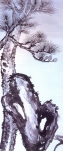 desenho-66-bonsai