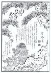 desenho-9-bonsai