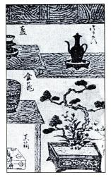 desenho-bonsai-20