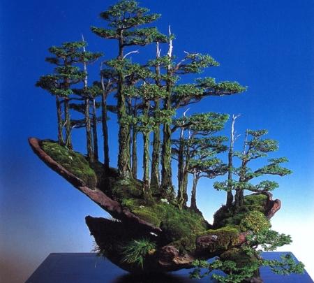 kimura-landscape