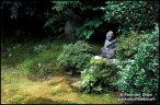 Jardim em Kyoto