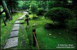 kyoto-garden-v-1213