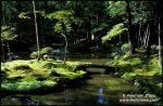 kyoto-garden-v-1933