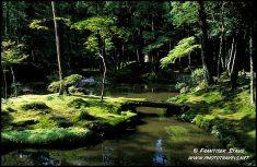 Jardin em Kyoto