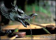 Dragão cuspindo água - na bacia Enryaku-ji templo no Monte Hiei, Kyoto, Japão