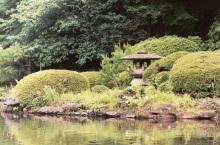 shinjuku_gyoen_japanese_garden