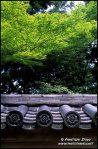 telhas-e-maple-folhas-verdes-em-daitoku-ji-complexo-de-templos-budistas-em-quioto-no-japao