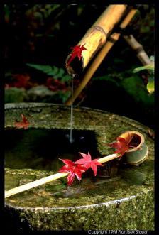 Tsukubai, a água do viajante.