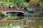 Lago de carpas em Hokaido
