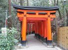 Fushimi Inari Shrine 2