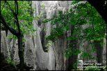 photo-china-d-028.3