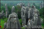 photo-china-d-031.3