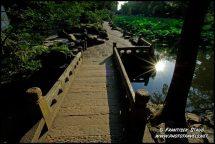 photo-china-d-118.3