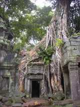Ta_Prohm023_tree_root_doorway