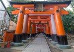 Tori-Gate_20070826_MG_3558-3560