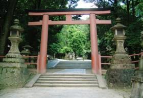 Torii_Nara
