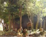 Floresta de Eugênias(detalhe)