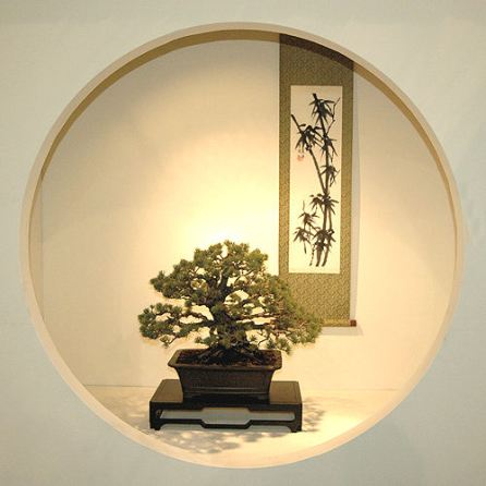 2008_philadelphia_bonsai_011