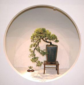2008_philadelphia_bonsai_013