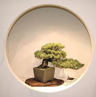 2008_philadelphia_bonsai_014