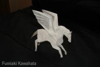 Fumiaki Kawahata