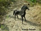 Kamiya Satoshi - 3