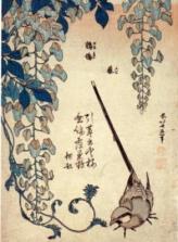 katsushika-hokusai-cutrettola-e-glicine-33348
