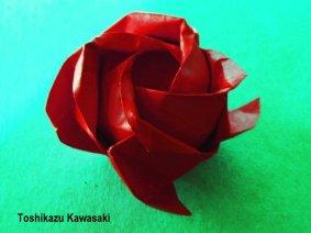 Kawasaki-Rose