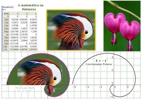 matematica_na_natureza_