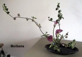 Moribana_Slanting_2.687.480