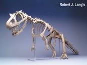 origami-tyranossauro