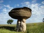 mushroom_rock_postcard-p239553363736900447qibm_400