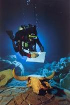 Wes. C. Skilles - 2003 - México - Um achado surpreendente
