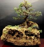Pedra Cascata