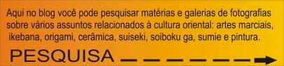 PUBLICADA PES