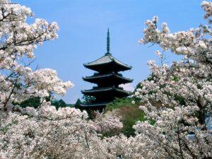 Templo de Ninnaji. Kyoto Japão