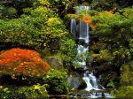 Japanese_Garden_Portland_Oregon