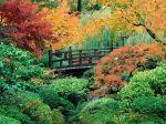 Japanese_Garden_Washington_Park_Portland_Oregon