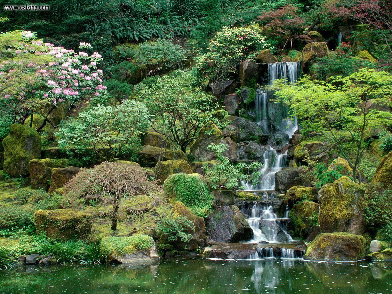 Japanese gardens portland oregon aido bonsai for Koi garden rio di pusteria