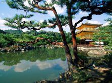 Templo de Kinjajuji. Kyoto Japão