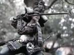 Samurai na floresta de Bonsai