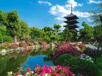Templo Toji - Kyoto japan